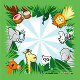 Jungle background. Background square with vegetation and nice animals of the jungle Royalty Free Stock Photography