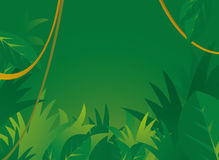 Jungle background with copyspace Royalty Free Stock Photos