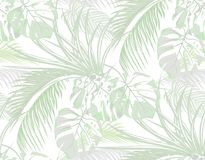 Jungle. background of leaves of tropical palms, monster, agave. Seamless. Isolated on white. illustration. Jungle. background of leaves of tropical palms vector illustration