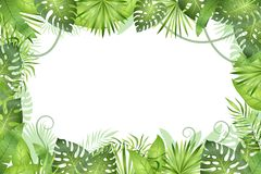Jungle background. Tropical leaves frame. Rainforest foliage plants, green grass trees. Paradise african wildlife jungle. Vector frame vector illustration