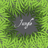 Jungle background Stock Image