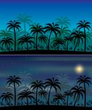 Jungle backgrounds. Day and night version, layered and grouped illustration for easy editing Royalty Free Stock Photo