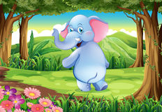 A jungle with a blue elephant Royalty Free Stock Photos