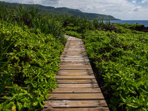 Jungle boardwalk through vegetation, Christmas Island, Australia Stock Image