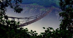 Jungle Bridge Stock Photography