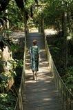 Jungle bridge, Brasil. Women on suspensionbridge in the jungle  Brasil Stock Photos