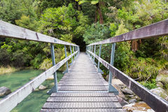 Jungle bridge Stock Image