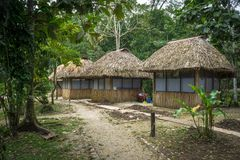 Jungle Cabins. In the middle of the jungle Stock Images