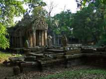 In jungle of Cambodia Royalty Free Stock Image