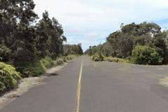 Jungle crater rim road, Kilauea, Big Island, Hawaii. Jungle crater rim road evoking adventure and exploration, Kilauea crater, Big Island, Hawaii Royalty Free Stock Photos
