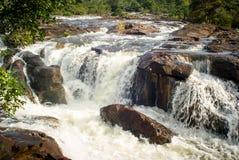 Jungle dans le Trekker Thaïlande Images libres de droits
