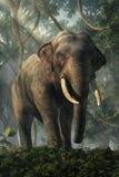 Jungle Elephant royalty free illustration