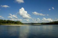Jungle et fleuve Photographie stock