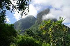 Jungle et montagnes de Moorea images stock