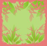 Jungle flowers. Illustration of exotic jungle flowers with grunge style border Stock Images