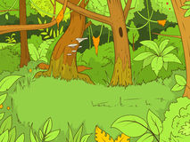Jungle forest cartoon vector illustration Stock Image