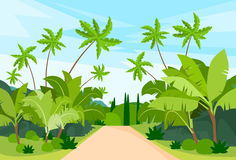 Jungle Forest Green Landscape with Road Path. And Blue Sky Vector Illustration royalty free illustration
