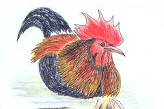Jungle fowl bird drawing. The original drawing of birds on white paper, jungle fowl Stock Images