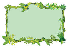 Free Jungle Frame Concept In Royalty Free Stock Photos - 13857558