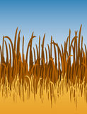 Jungle Grass Vector Illustration. Build your own Jungle Royalty Free Stock Photos
