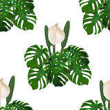 Jungle. Green tropical leaf and monster flowers. Seamless floral pattern.  on white background. illustration Royalty Free Stock Photos
