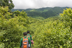Jungle hike, Asia Stock Image