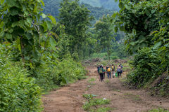 Jungle hike Luang Prabang, Laos. Group of tourists hiking through the lush green jungle in the mountains of Laos Stock Photography