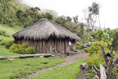 Jungle Hut Stock Photo