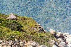 Jungle Hut Stock Images