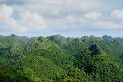 Jungle on an island Cat Ba in Vietnam. Footpath in the dense jungle of the Cat Ba island, Halong bay, Vietnam Stock Images