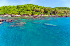 Jungle island Royalty Free Stock Photos