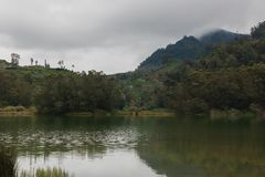 Jungle lake in mountains royalty free stock images