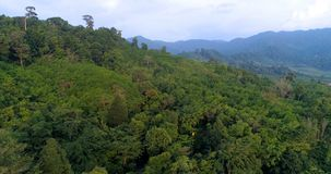 Jungle. Landscape. Aerial. Thailand. Top view of the hills covered with jungle. Thailand.  Aerial stock video