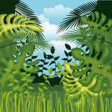 Jungle landscape background isolated icon design. Illustration  graphic Stock Image