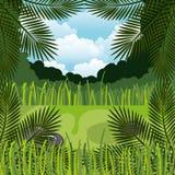 Jungle landscape background isolated icon design. Illustration  graphic Stock Photo