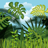 Jungle landscape background isolated icon design Stock Photo