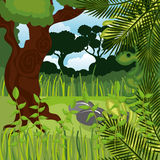 Jungle landscape background isolated icon design. Illustration  graphic Stock Photos