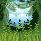 Jungle landscape background isolated icon design. Illustration  graphic Royalty Free Stock Photos