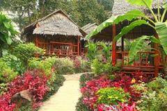 Jungle landscape Stock Photo