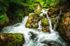 Jungle landscape with flowing turquoise water of georgian cascade waterfall at deep green forest. Mountain of georgia.  Royalty Free Stock Photography