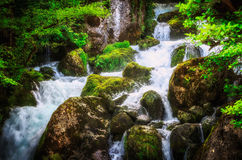 Jungle landscape with flowing turquoise water of georgian cascade waterfall at deep green forest. Mountain of georgia Royalty Free Stock Image