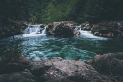 Jungle landscape with flowing turquoise water royalty free stock photo