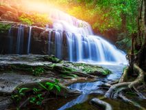 Jungle landscape with wonderful waterfall. At deep tropical rain forest, vacation and relaxation concept stock images