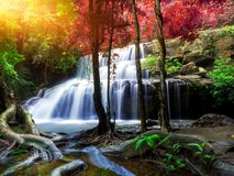 Jungle landscape with wonderful waterfall. At deep tropical rain forest, vacation and relaxation concept stock photography