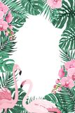 Jungle leaves orchid flowers flamingo birds frame. Tropical jungle rainforest green palm tree monstera leaves, orchid phalaenopsis flowers exotic pink flamingo Stock Photography