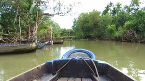 Jungle in Mekong delta, Vietnam, view from a moving boat Stock Images