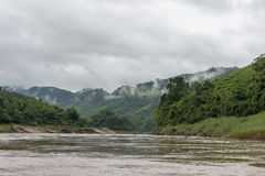 The jungle at the Mekong Laos. The slow boat at the Mekong from Houay Xai to Luang Prabang through the jungle in Laos. It takes a journey of two days with this stock images