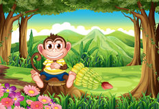 A jungle with a monkey above the stump Royalty Free Stock Photos