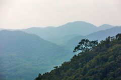 Slope of the rainforest. Yanoda Rain Forest. Hainan, China. royalty free stock image