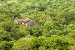Jungle mountain aerial view Royalty Free Stock Photos